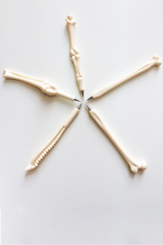Ручка-кость